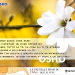 01 # Crescere dipende da te