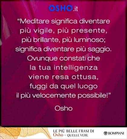 08 # Sii saggio