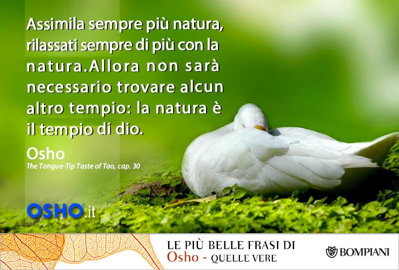 34 # Assimila più natura