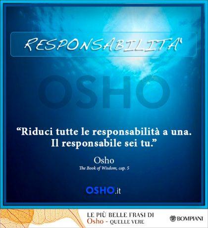 50 # Responsabilità